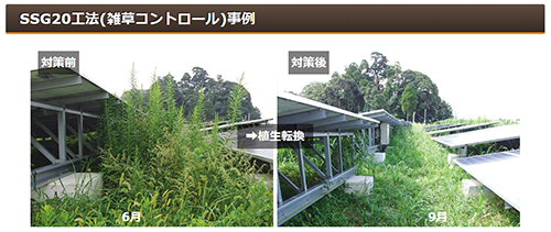 SSG20工法 雑草コントロール事例